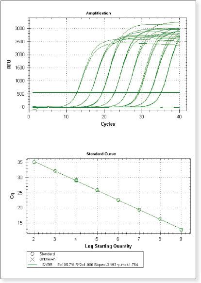 ProtoScript II Reverse Transcriptase displays superior sensitivity