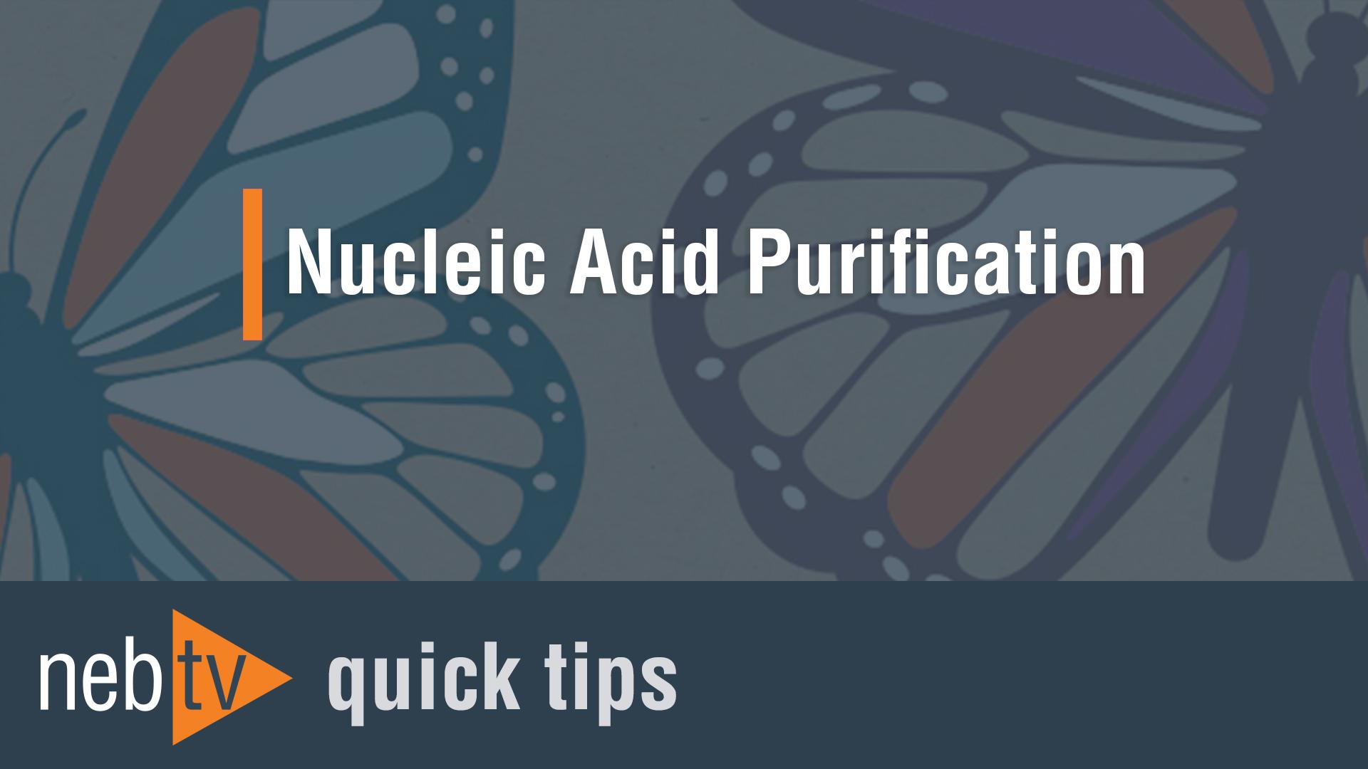 NEBTV_Nucleic-Acid-Purificatio_1920